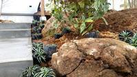 植栽工事中2  - 成長する家 子育て物語