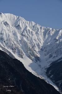 Snowshoeing in Kamikouchi - Sauntering