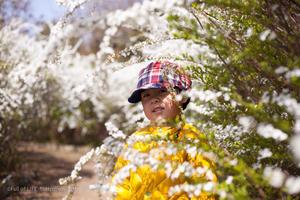 春の彩りの花の園 - Full of LIFE