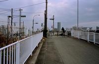 川沿い(その8) - そぞろ歩きの記憶
