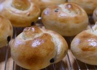 チョコ&桜 - ~あこパン日記~さあパンを焼きましょう