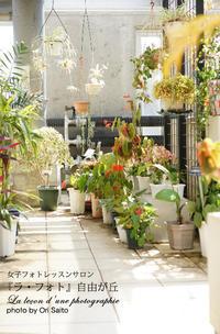 """αガールズ、愚者の楽園へ。 - 東京女子フォトレッスンサロン『ラ・フォト自由が丘』の""""恋するカメラ"""""""