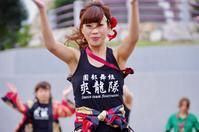 2016第13回赤穂でえしょん祭りその49(爽龍隊その2) - ヒロパンの天空ウォーカー
