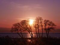 冬の夕日 - photomo