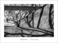 春の影絵 - Minnenfoto