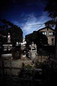下のほうを歩いてみようかと思った。 #07 - Yoshi-A の写真の楽しみ