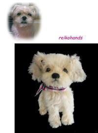ミックス犬、可愛い~! - レイコハンズの手作りな日々