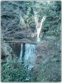 久しぶりにハイキング - タワラジェンヌな毎日