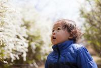 春の彩りの花の園で遊ぶ - Full of LIFE