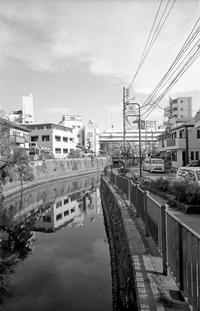 川沿い(その9) - そぞろ歩きの記憶