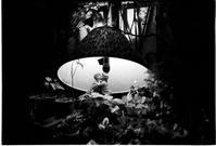 純喫茶ローレンス③ - Picture In A Frame