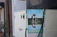 かしげた猫 - おれんじねこどろっぷの写真録