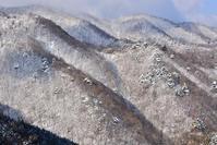 春の霧氷 - 峰さんの山あるき