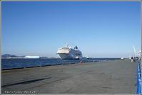 クルーズ客船「飛鳥Ⅱ」初寄港 - 野鳥の素顔 <野鳥と・・・他、日々の出来事>