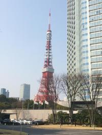 東京へことりっぷ : Day 1-① - 日々の出来事と旅の記録