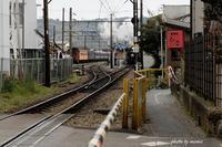 大井川鉄道 SL - 長い木の橋