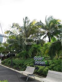 植物的生活785 - Atelier Botanique COCA-Z
