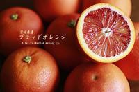 緊急! ブラッドオレンジ直販 - 季節の風を感じながら・・・