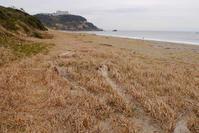 荒涼な伊良湖岬 - Beachcomber's Logbook