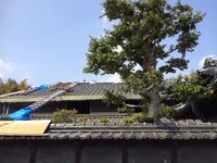 天理の家 進捗状況6 - 「木の家づくり」奈良の設計事務所FRONTdesign 女性建築士の設計ウェブログ