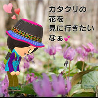 カタクリの花とミヤマキリシマが見たい\(^o^)/ - 島みさ☆メッセージ