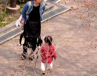 開花始まる・慶ちゃん散歩・・・ - かってに美「ART」