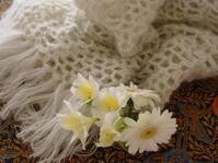 春のショール - LilyのSweet Style