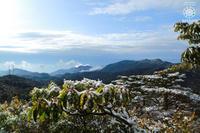雪残る屋久島の奥岳より - 屋久島ガイドがお届けする今日のおすすめヒトトキ