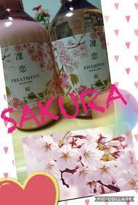 桜シャンプー - タイ式マッサージ サイチャイ
