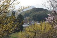 明日香八釣 冴えない天気なので比較 - ぶらり記録(写真) 奈良・大阪・・・