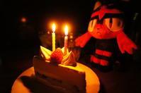 22th anniversary - Shikisai