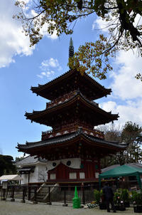 加古川の鶴林寺大護摩供養 - 写真の散歩道