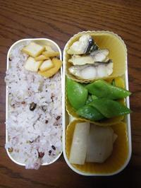 ある日のお弁当(魚の粕漬け焼き) - ぐうたらせいかつ2