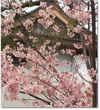 墓参&春のお彼岸参り@天王寺(大阪) - ☆Sweets diary☆Ⅱ