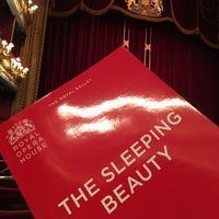 ロイヤルバレエ団のThe Sleeping Beauty - Chakomonkey Everyday in London
