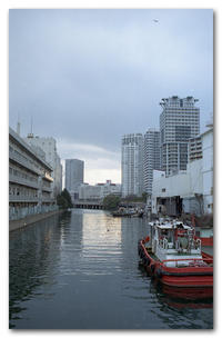 #2145 万代橋から - at the port