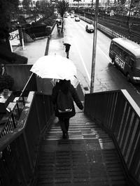 冷たい春雨 - 心のカメラ / more tomorrow than today ...