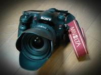 アウフッ・・・気がつけばもう四月やし~♪ - 日本写真かるた協会~写真が好きなオッサンのブログ~