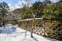 鷹ヶ峰の雪景色 - 花景色-K.W.C. PhotoBlog