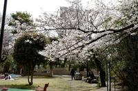三田 寺町 - tomotomo