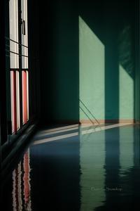 春の展示室 - Amo Amo Annex