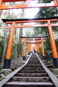 京都旅行 - なちゅフォト