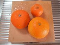 はっさくと清見オレンジとかのジャム。 - 暮らしのつづりかた。
