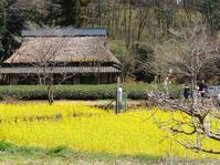 昭和村散歩のデジブックを公開しました。 - 写真撮り隊の今日の一枚2