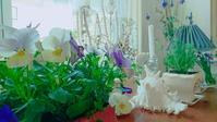 暖かくなると庭仕事がしたくなります - 花とフラと好きなものに囲まれて…♪
