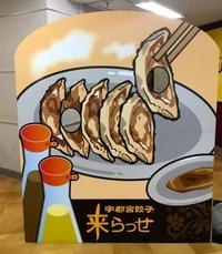 焼餃子(宇都宮)/ Fried dumplings (Utsunomiya) - HameMichelin - KAOHAME Guide