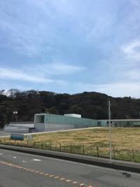横須賀美術館アクアマーレでランチ - おいしいもの大好き!