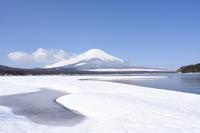 山中湖 平野 - 風とこだま