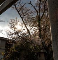 新年度に対しての意気込み! - 阿野裕行 Official Blog