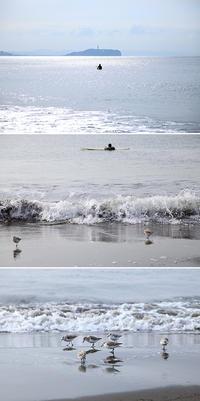 2017/04/02(SUN) 穏やかな海辺でビーチクリーン! - SURF RESEARCH